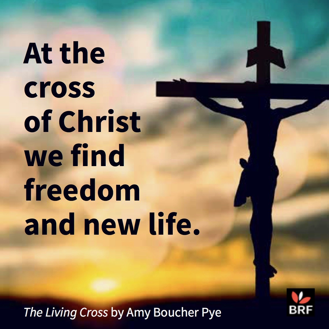 amy boucher pye the living cross means freedom